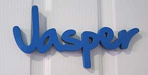 Jasper300
